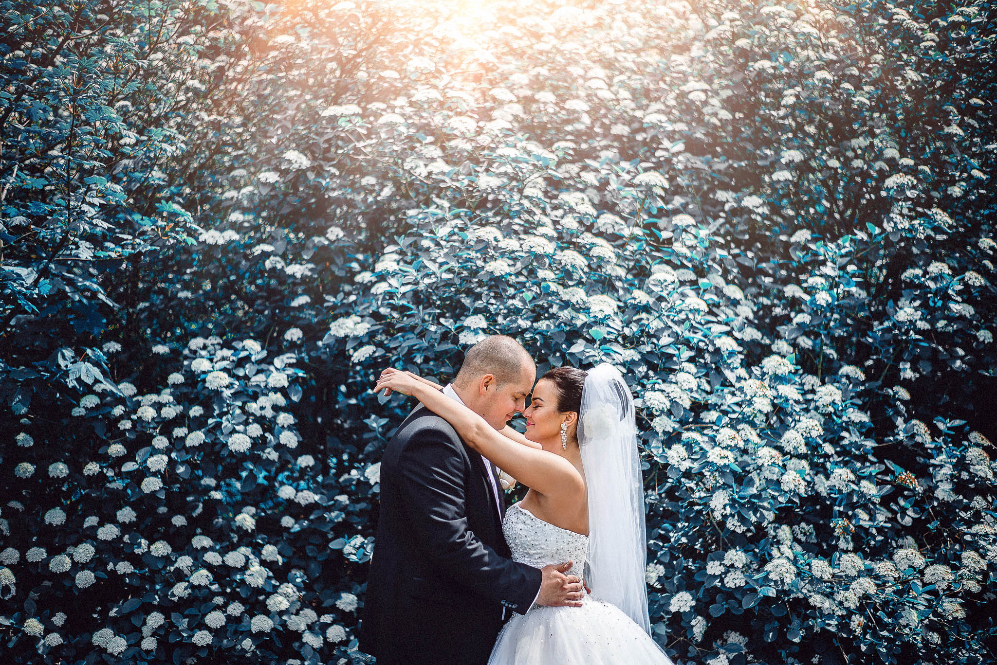 nevesta, ženích, oblek, šaty, závoj, láska, príroda, love, wedding dress, Bratislava, Trenčín, Žilina, Liptov, fotograf, kameraman, západ slnka, sunset, romantika, protisvetlo, backlight, rozprávka, fairytale, farby, nádherné, krásne
