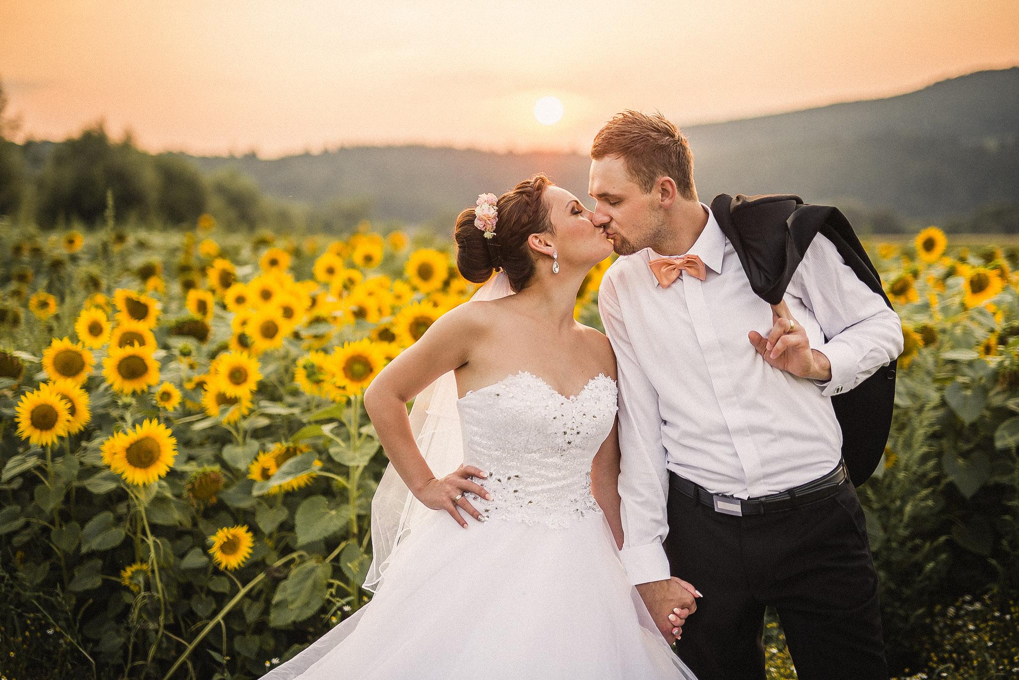 nevesta, ženích, oblek, motýlik, sako, šaty, láska, príroda, slnečnicové pole, slnečnice, love, Bratislava, Trenčín, Žilina, Liptov, romantika, bozk, pusa, západ slnka
